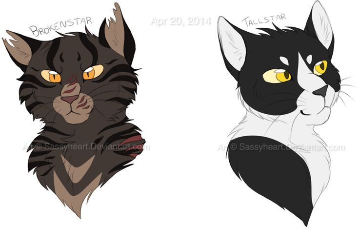Warrior Cats Adoptables Site