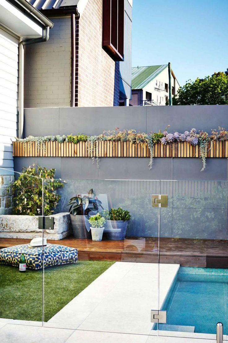 backyard-pool-glass-fence-vertical-garden-mar15 More