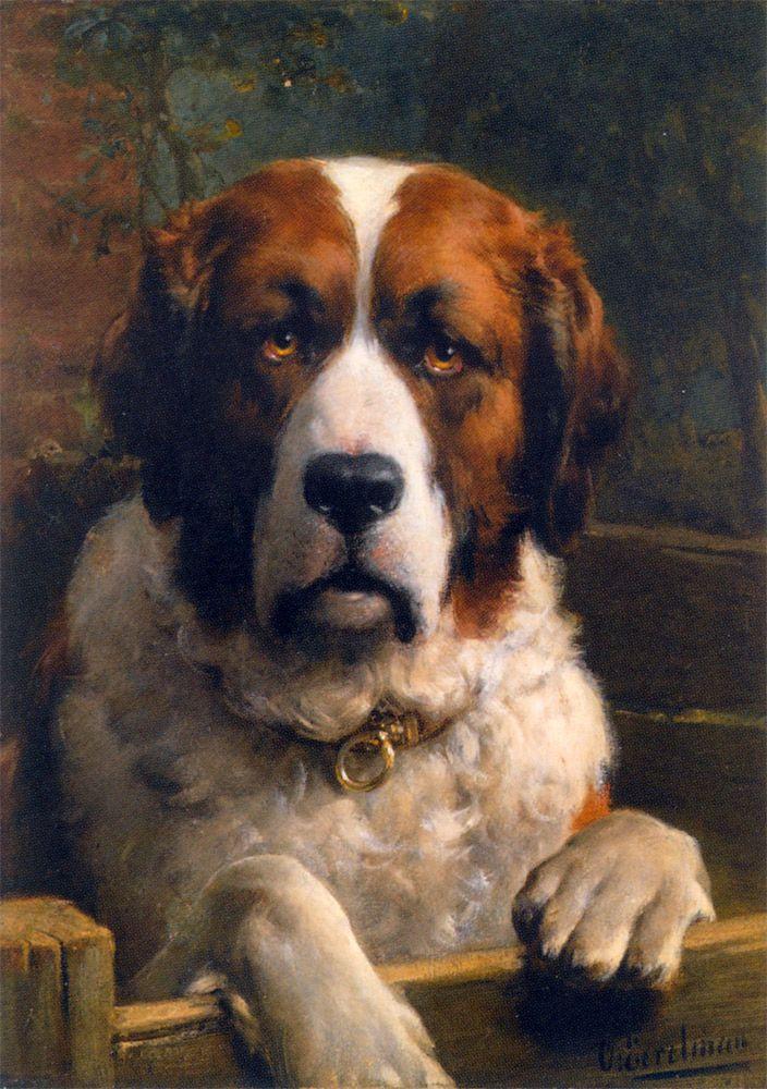 Oil paint style i like: Art Dogs, Oil Paintings, Dogs Paintings, Animal Paintings, Dogs Art, Bernard Dogs, Saint Bernards, Eight In Amber, Dog Paintings