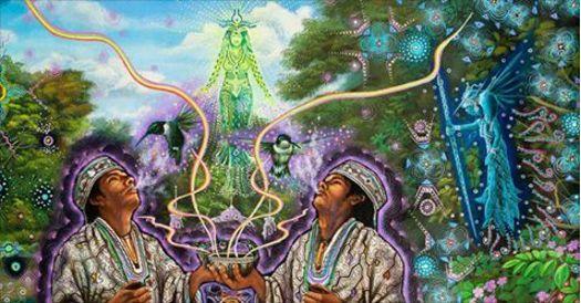 Plantes légales qui peuvent modifier votre conscience et éclaircir vos rêves de façon spectaculaire