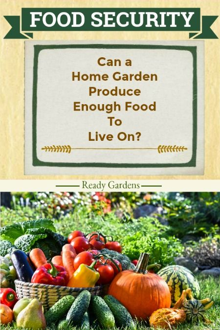 Can A Home Garden Produce Enough Food To Live On Ready Nutrition