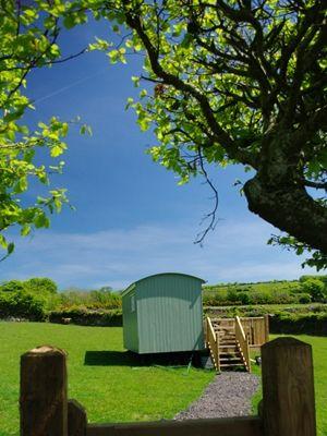 Glamping in a Shepherds Hut at Higher Bodley Farm, Exmoor, Devon