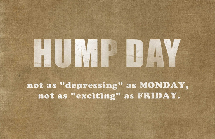 "Oh ""hump day""!  #hump #babysdream #quote #wednesday"