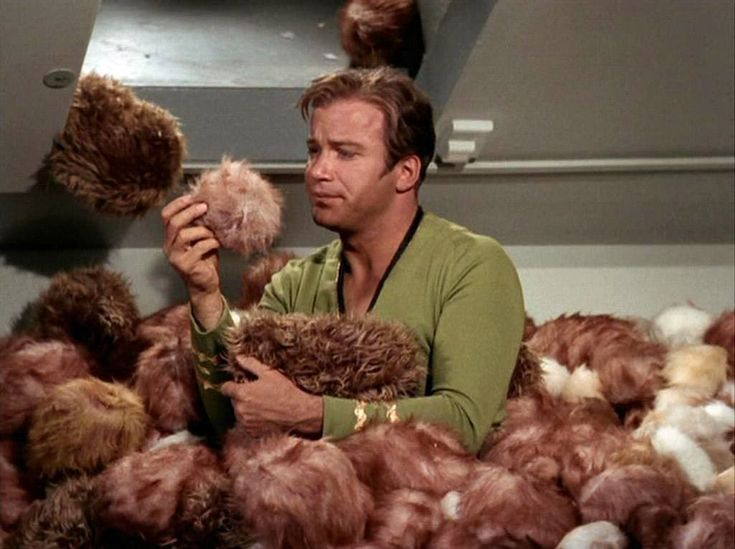 "Fifty years ago today, ""The Trouble with Tribbles"" first aired on television! What was your favorite moment? #StarTrek #TrekHistory #TOS #LLAP"