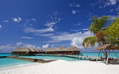 Scarica sfondi Estate, mare, Maldive, bungalow, spiaggia, palme, isole tropicali