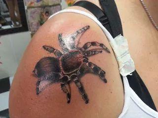 Tattoo spider