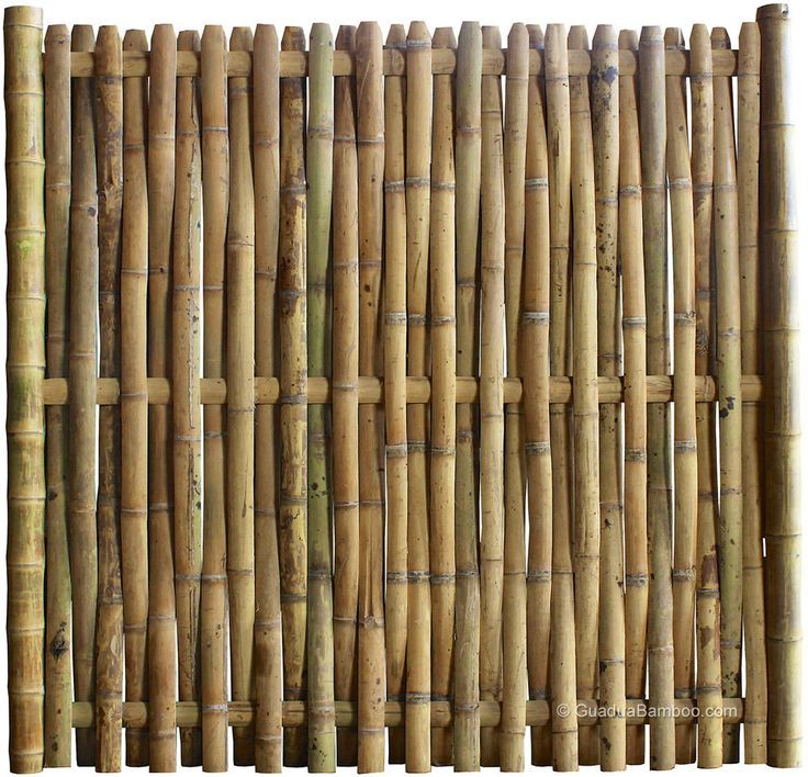 best 25 bamboo fencing ideas on pinterest terrace tuin. Black Bedroom Furniture Sets. Home Design Ideas
