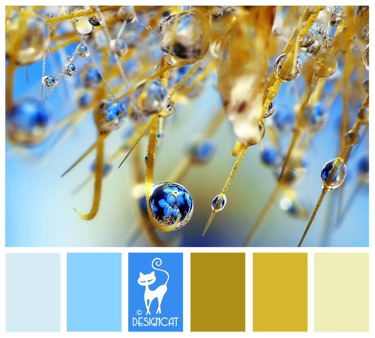 Dew Drop - Toffee, coffee, beige, cream, pastel, blue, turquoise, Designcat Colour Inspiration Board