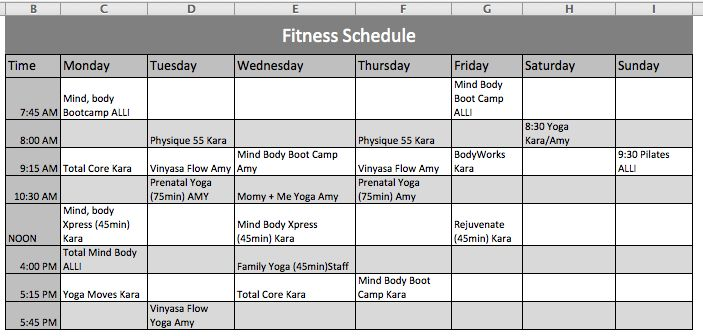 Fitness Schedule Template Official Templates Pinterest - monday to sunday schedule template