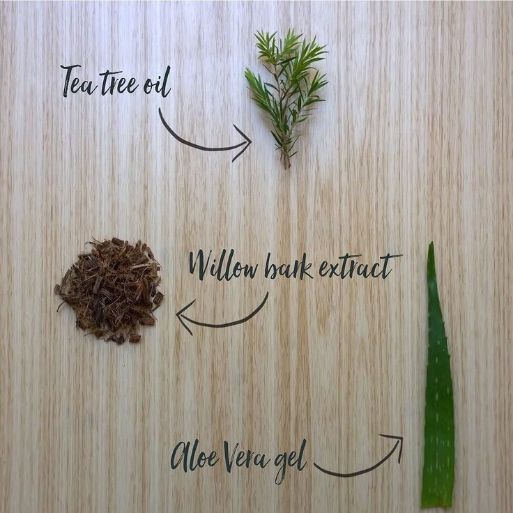 A few of the natural ingredients in our HairScalp range. Tea Tree oil- Antiseptic and anti-fungal effective in controlling dandruff and itchy or inflamed scalp. Willow Bark extract- Salicylic Acid derived from Willow Bark acts as a natural Keratolytic for scale removal. Aloe Vera gel- displays superior emollient and moisturising proporties. #trichovedic #hairwisdom #luxuryhaircare #trichovedicingredients