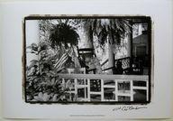 $20.99  Black AND White Photographic ART Print American Breeze VI BY Laura Denardo |