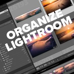 How to organize your photos in Lightroom. Don't panic, clean up and organize…
