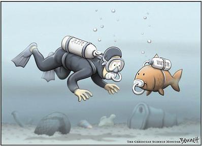 Essay about aquatic animals cartoon