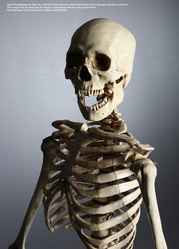 люди нуждаются ходячий скелет фото стаи ворон преследуют