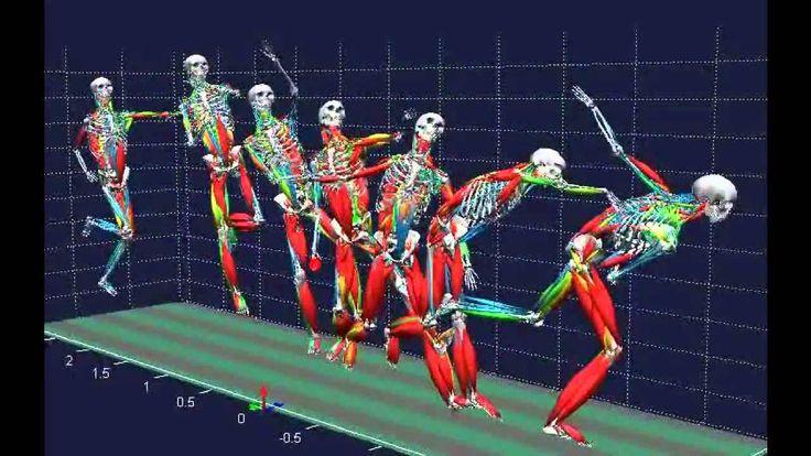 (PDF) Biomechanics of human movement and its clinical ...