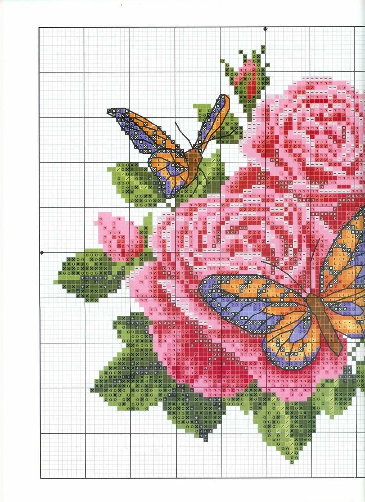 d426861f6f7b4bc2.jpg (image)