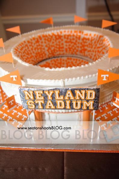 Neyland stadium cake By Daisy cakes