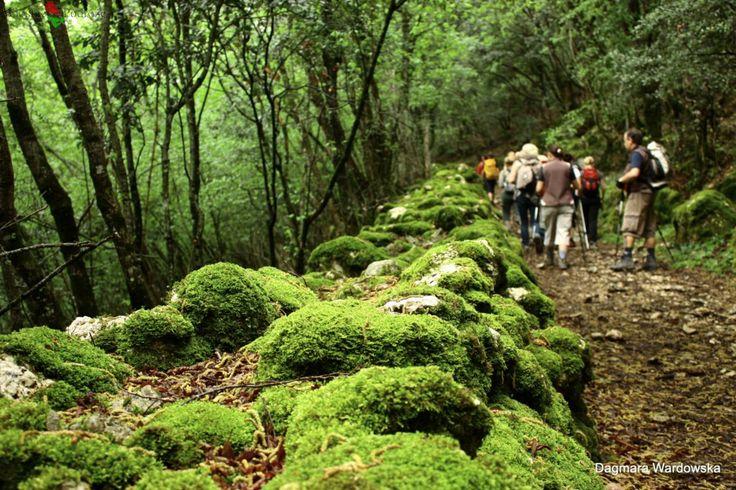 Umbria Kraina Świętych Suszków, Weekend majowy we Włoszech, Włochy, Wycieczki Kilkudniowe, Weekendy, Trekking, Weekendy, Weekend Majowy, Eco...