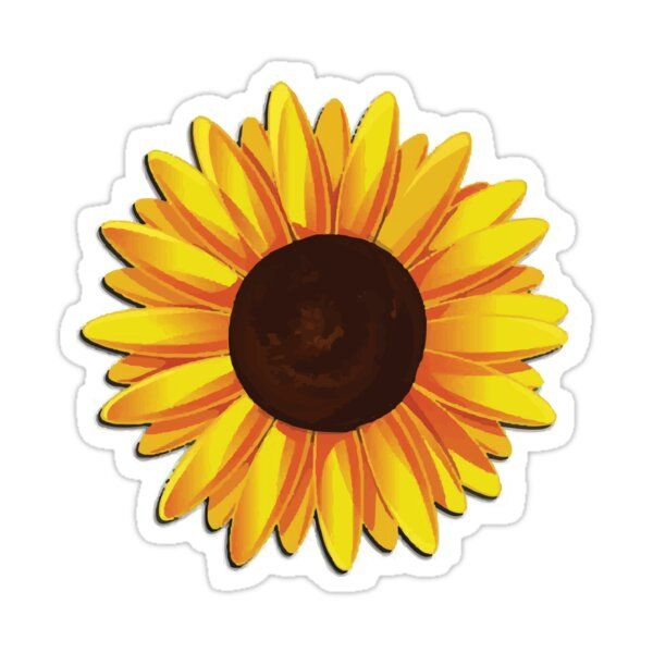 Sunflower Sticker By Ericbracewell Sunflower Images Flower Drawing Sunflower Drawing