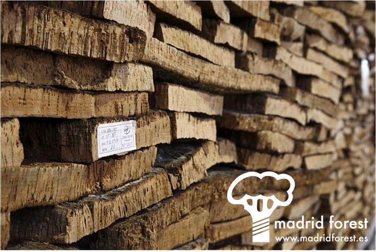 Corcho suelos paredes 10 handpicked ideas to - Revestimiento de corcho ...
