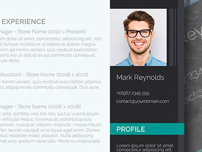 Best 25+ Professional resume template ideas on Pinterest Resume - professional resume template