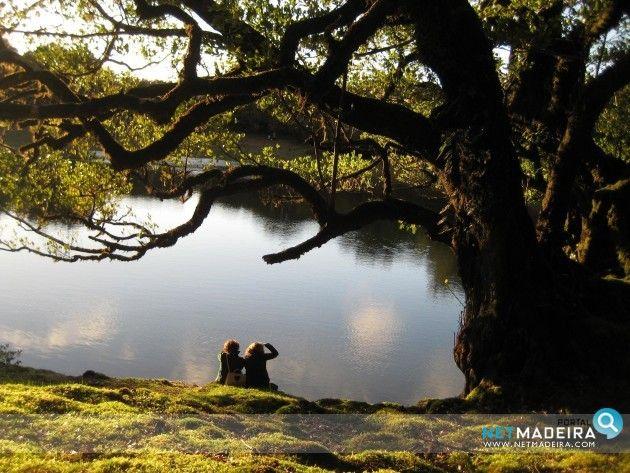 Lagoa no Fanal