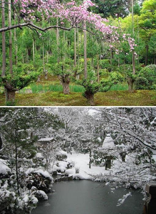 El Jardín Ryoan-ji – Japón