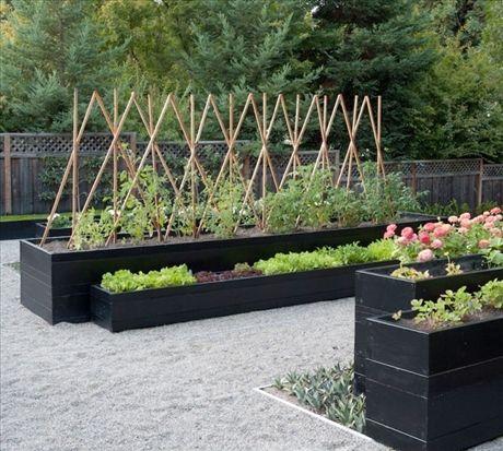 Höga svarta odlingslådor med tomat och sallat