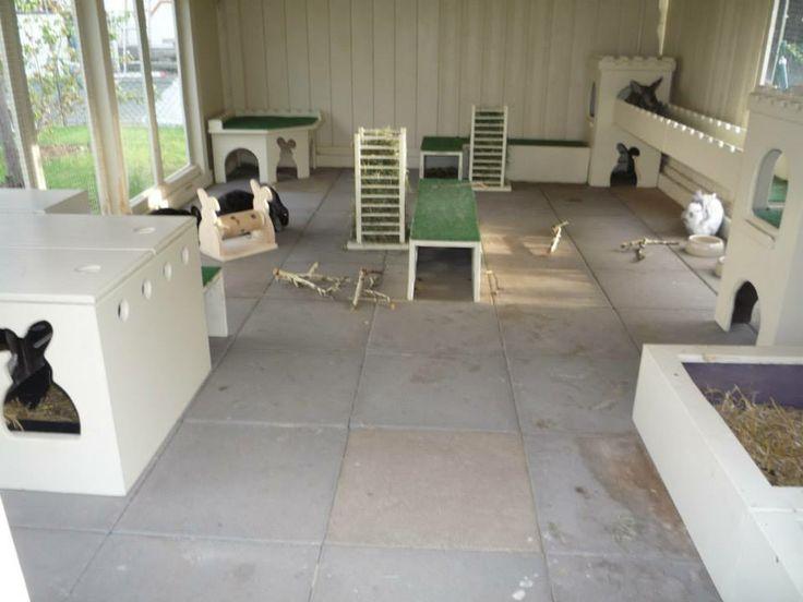 inside german rabbit house