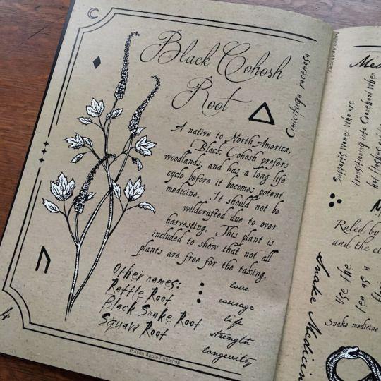 Poison Apple Printshop Use similar design in herbal compendium?