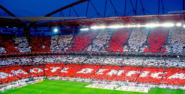 AMO-TE BENFICA!!  Estádio da Luz