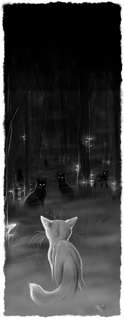 I bet starclan let Ashfur chose where to go: starclan or the dark forest, then he looked in the dark forest and saw all the cats there and then he was like 'NOPE'