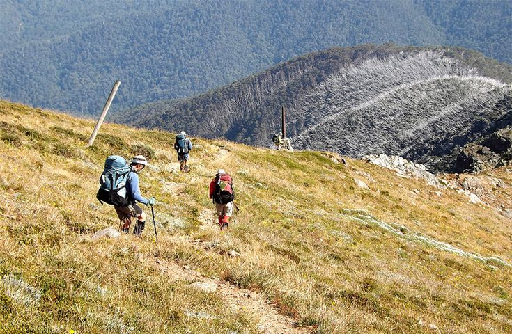 Ian Trevaskis provides a full Track Notes account of his recent walk from Hotham to Taylors Crossing in the Australian Alps.