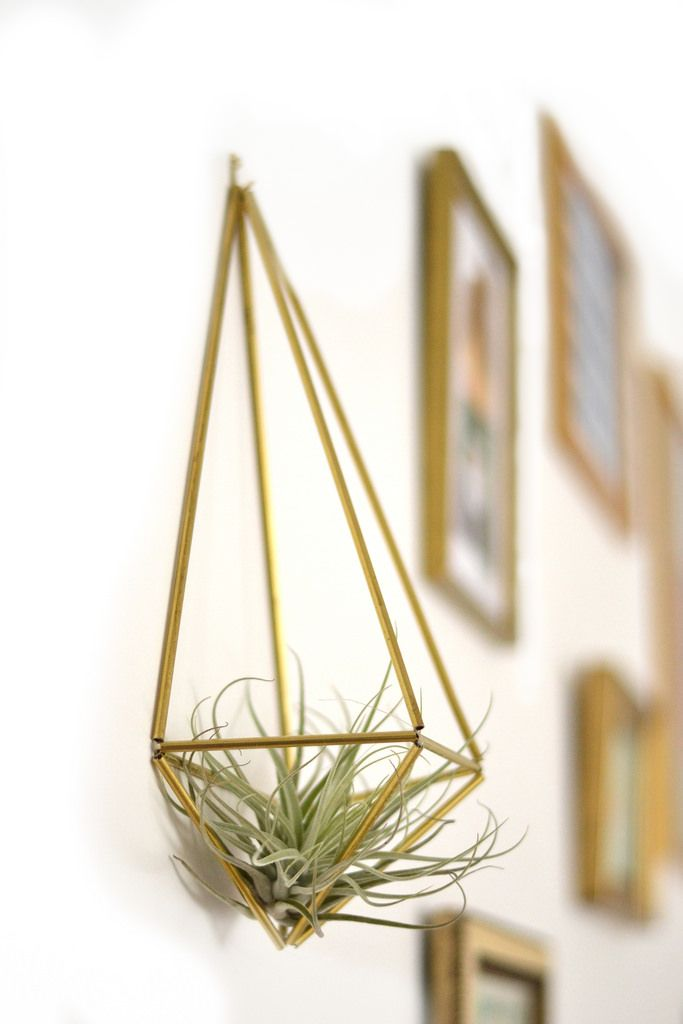 Himmeli, putting some of these with air plants in the nursery for sure. My baby must love nature!