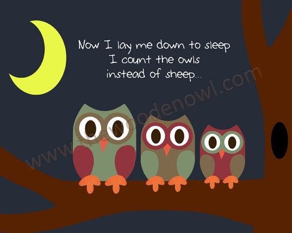 O.M.G. I love these owls!!!