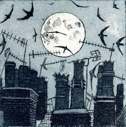 Night Flying - Janis Goodman