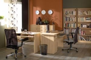KLIO BRW Cabinet (Home Office). Elements of the collection available in two colours: tatra beech and wenge. It is an economical solution for those who want to decorate their interiors interesting and inexpensively. Polish BRW Modern Furniture Store in London, United Kingdom #furniture #polish #brw #homeoffice