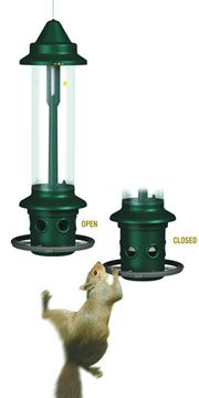 Squirrel Buster Plus Feeder - Won Best New Product Award