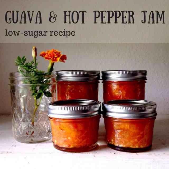 Recipe for guava hot pepper jam using Pomona's Pectin.
