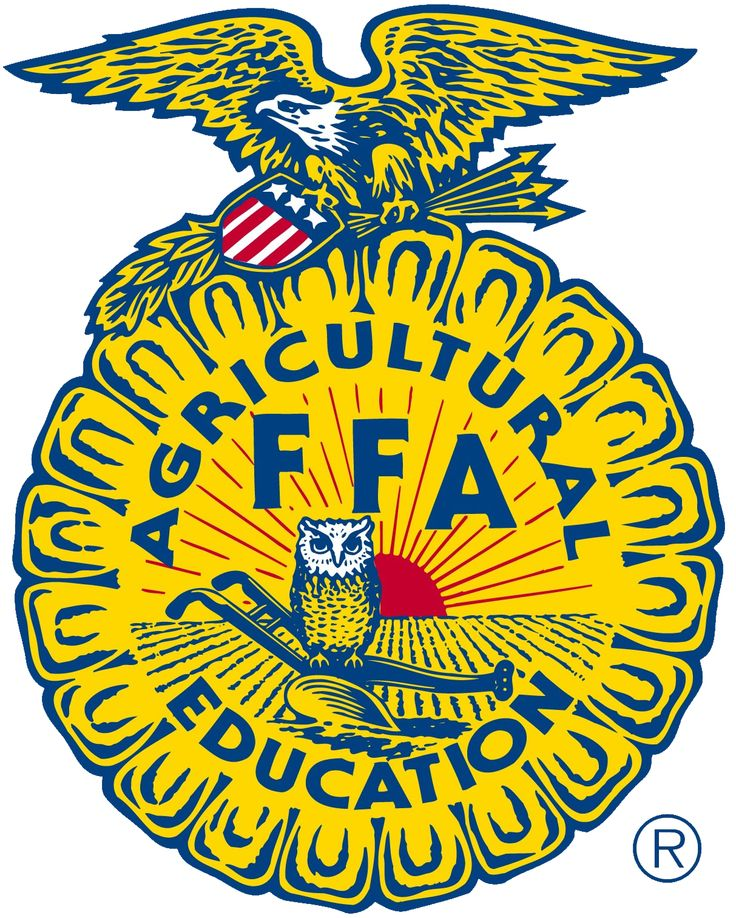 this is the ffa logo on the jacket you get if your in ffa