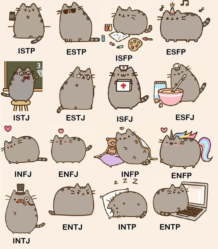 Found this image of Pusheen   demonstrating examples of MBTI on Tumblr