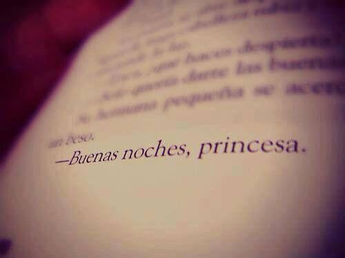 〽️-Buenas noches, princesa.