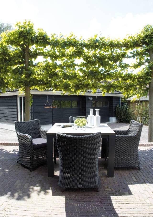 Rattan Sitzgruppe Im Garten Privatsphäre Terrasse Sichtschutz  Kletterpflanzen