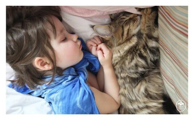 Iris y Thula: la increíble historia de amistad entre una niña autista y su gata…