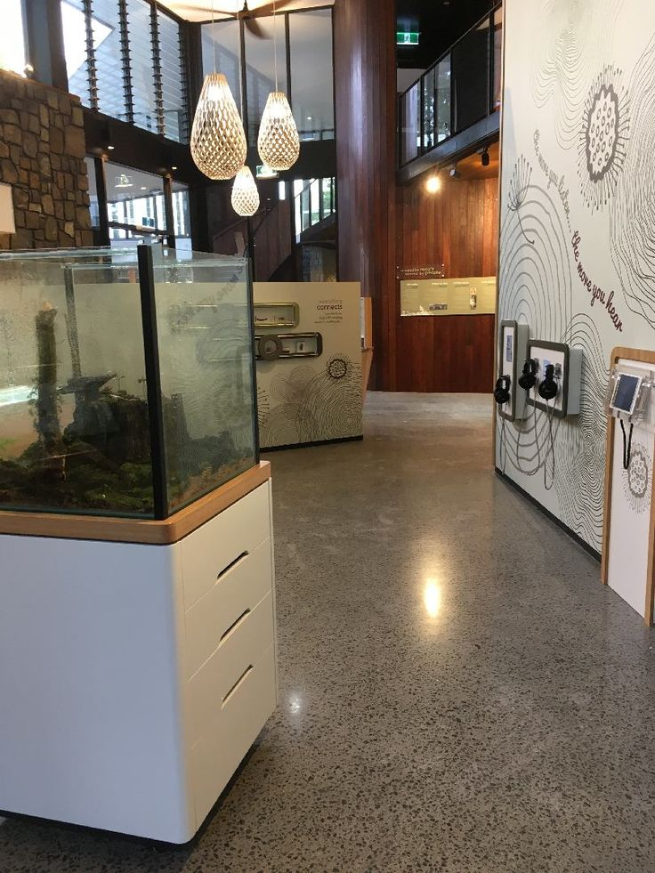 Mobile cases, augmented reality, audio interactives and magnifying glass displays...#focusproductions thinking outside the box in designing exhibits for the Mary Cairncross Scenic Reserve Rainforest Discovery Centre.