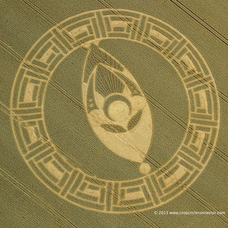 "Aerial video footage and images of a remarkable crop circle found on August 23, 2013 at Cooks Plantation, near Beckhampton, Wiltshire, UK. A few of the more remarkable aspects of this crop circle include: ""facial recognition, the use of split wedges to give calendar dates, and field location near the centroid of a large, 30-60-90 triangle."