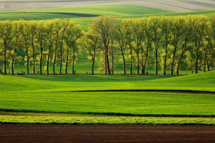 Co o jižní Moravě píše tisk - nature of South Moravia, Czech Republic
