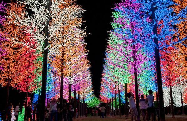 Beautiful Christmas Trees in Selangor, Malaysia.