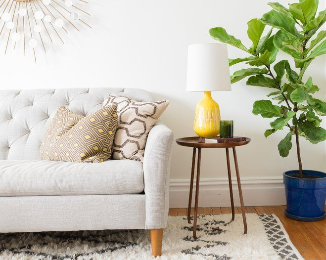 Decorate with Nature: Bring the Outdoors in! Learn how to style your home with the benefits of plants in your home—no green thumb required! You don't need a sprawling lawn or greenhouse garden to gain the benefits of plants. Aside from cleaning the air, indoor plants add colour, texture, and shape to any room. Our ideas show you why sometimes the best decor is green and leafy.