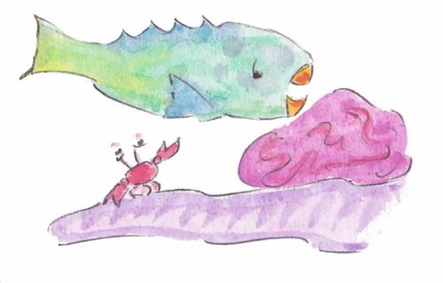 "Illustration- ""A Parrotfish's Tale"" by Christina Maas parrotfishpublishing.com"